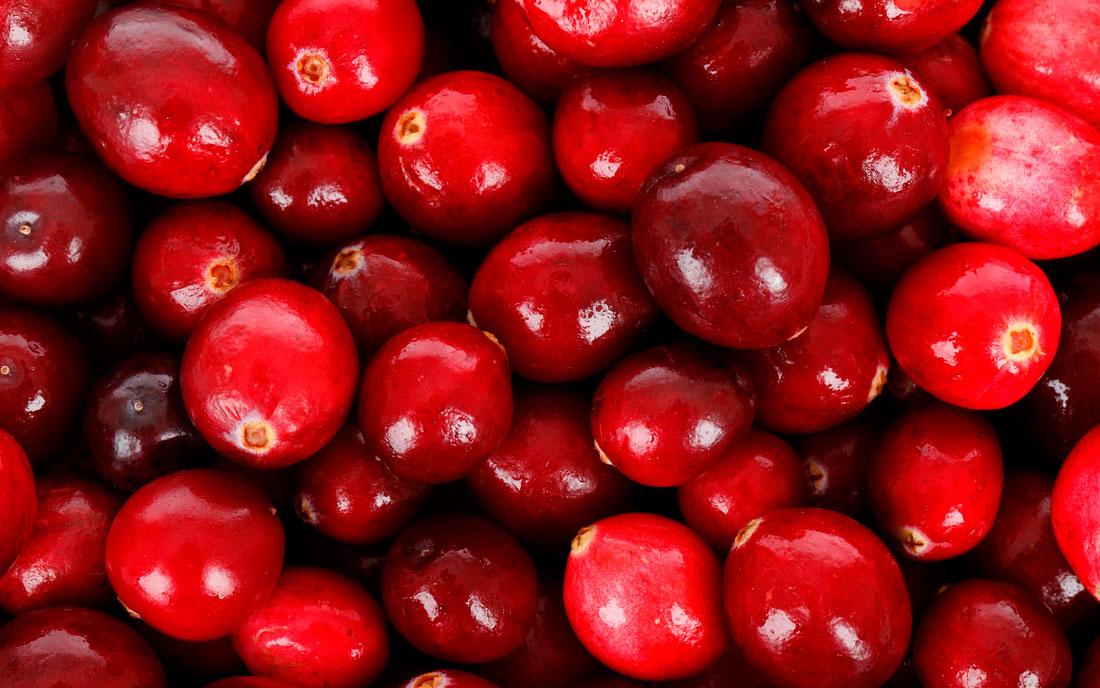 Arándano rojo para la cistiits